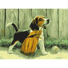 Картина по номерам 40х50 см, ОСТРОВ СОКРОВИЩ 'Щенок бигля', на подрамнике, акриловые краски, 3 кисти, 662476