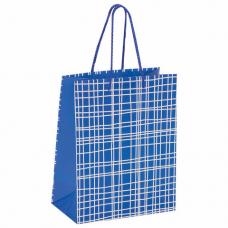 Пакет подарочный 17,8x9,8x22,9 см, ЗОЛОТАЯ СКАЗКА 'В голубую клетку', ламинированный, 606597
